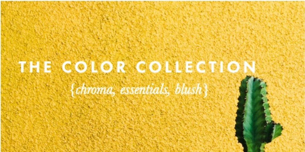 the color collection photoshop and lightroom presets graphic