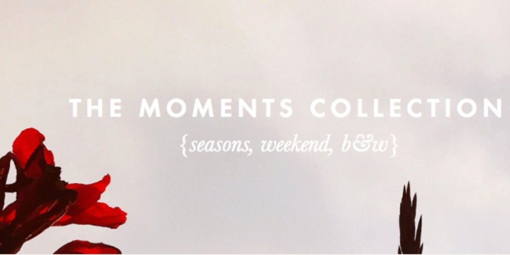 the moments collection graphic