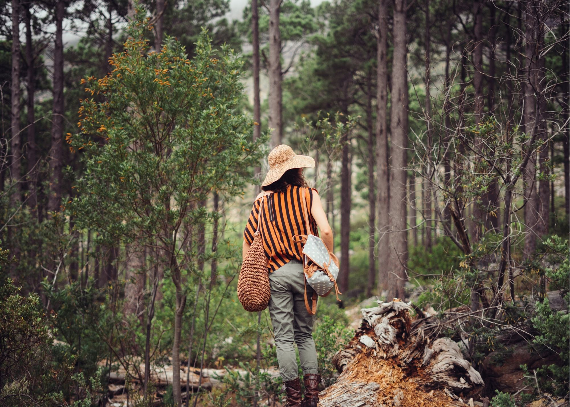 25 Blog Post Ideas For Photographers - Girl In Forest