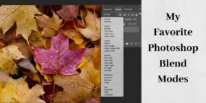 using blending modes in photoshop with fall leaves